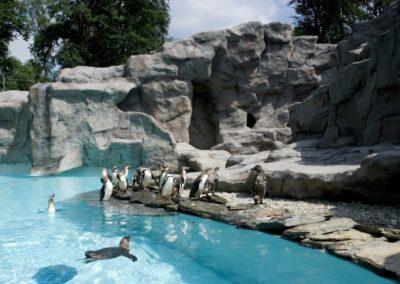 zoo krakowskie - co robić z dzieckiem w krakowie
